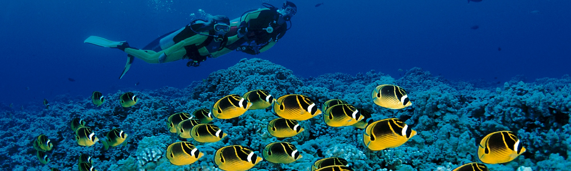 Maui Dive Certification Open Water Diver Advanced Open Water