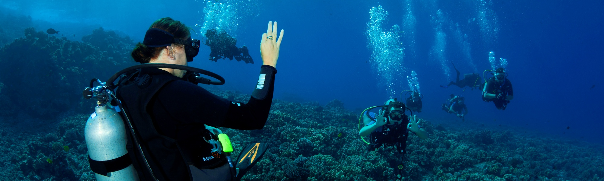 Try Scuba Diving in Wailea
